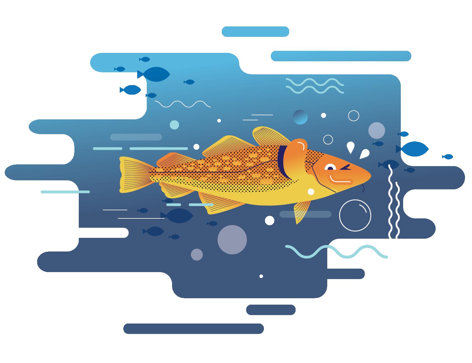 Ryby zasobem i towarem eksportowym