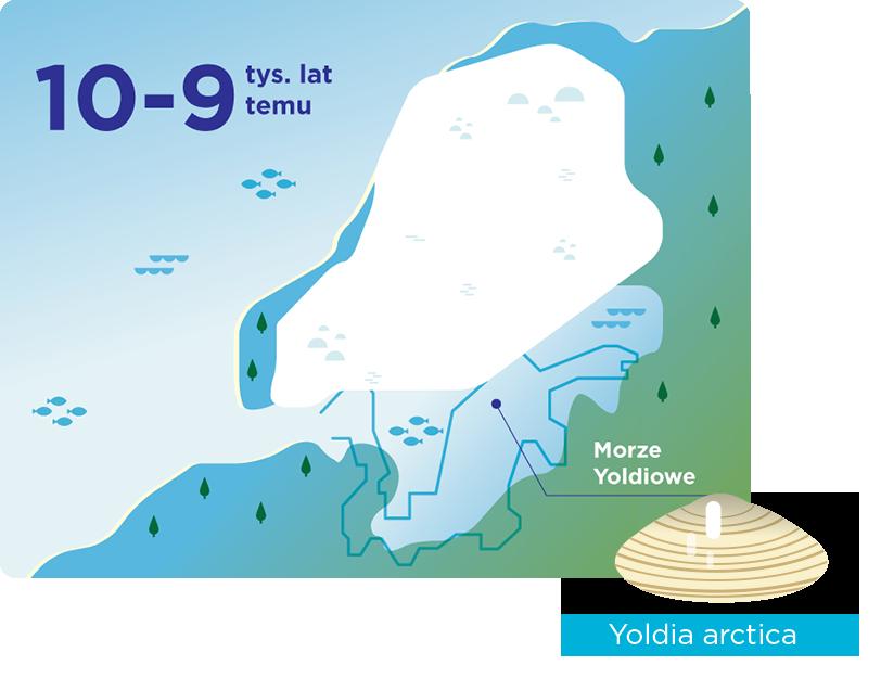 Morze Yoldiowe