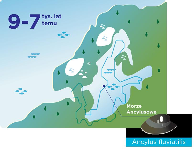 Jezioro Ancylusowe