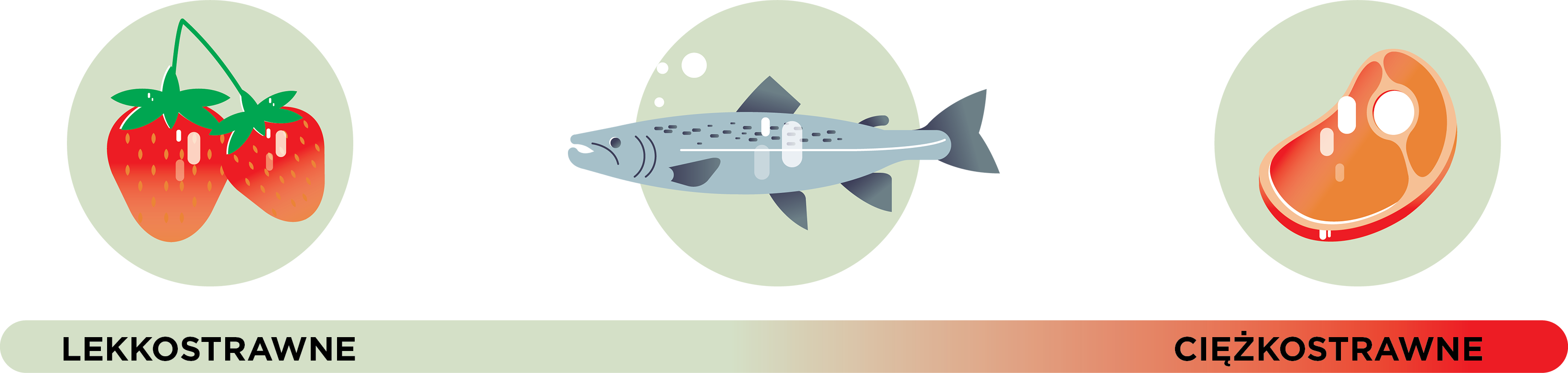 Ryby są lekkostrawne